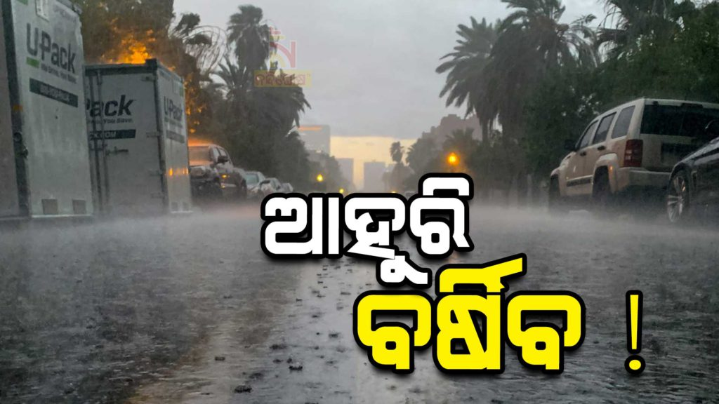 Rain Fore Cast Yellow Waring To 11 Districts Of Odisha