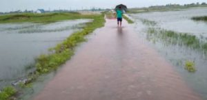 Central Team On Two Day Visit TO Flood Affected District Of Odisha