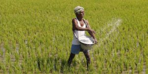 Bihar Election 2020 PM Narendra Modi Agriculture Bills Farmers Protest