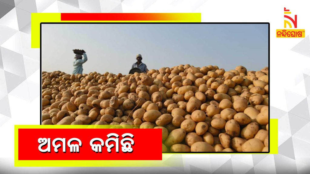 Potato Prices Up 92 In One Year Onions By 44 In India