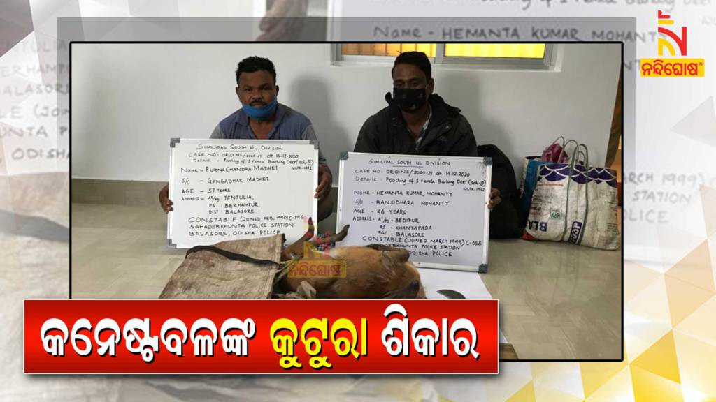 2 Constable Of Balasore Police Arrested By Forest Department For Hunting