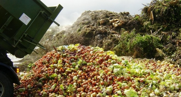 India's Agricultural Produce Is Wasted Annually