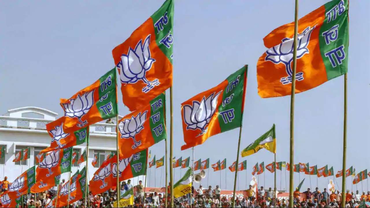 bjp defated in panchayat election in up