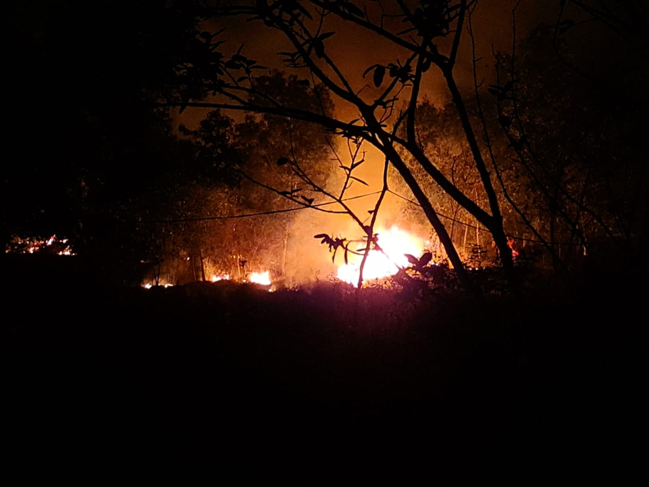 Similipal Fire, Naveen Directs To Take Precautionary Measure