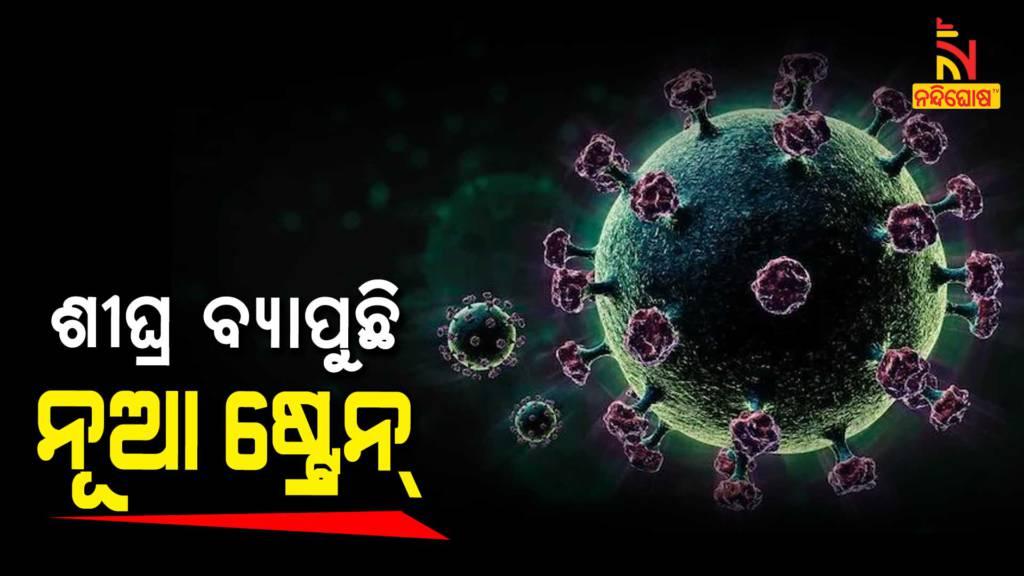 Odisha Targets Daily 50K Covid Test Amid Rising Covid infection