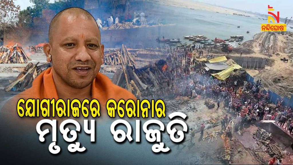 BJP MLA, MP Questioning On Up CM Yogi Adityanath Corona Management