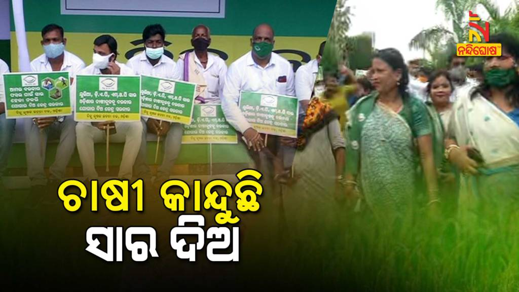 Fertilizer Shortage In Odisha, BJD Protest Against Centre Fertilizer Shortage In Odisha, BJD Protest Against Centre