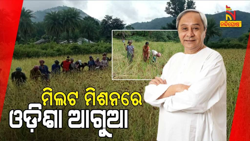Odisha To Get Poshak Anaj Awards